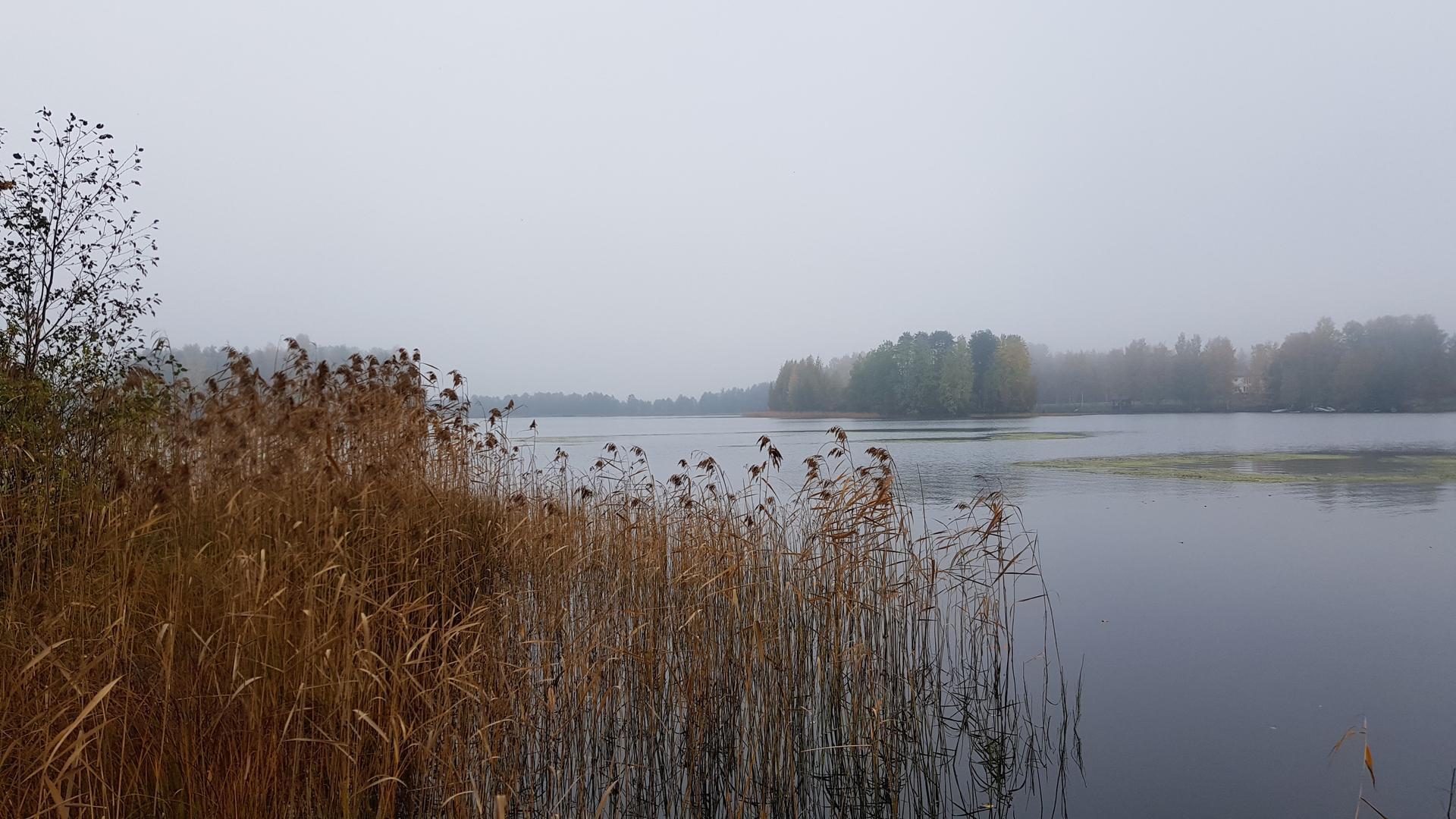 Saarimökki - Obrázek č. 99