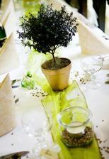 stůl ozdobím květináčky s kytkami, ještě nevím, jaký druh kytek to bude, ale určitě bude s květy v barvě svatby