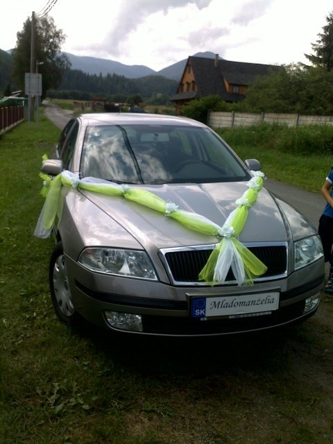 Lenka a Lukino 22.1.2011 - naša výzdoba... len auto bude iné :o)))