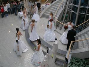 Ze Svatebního Veletrhu