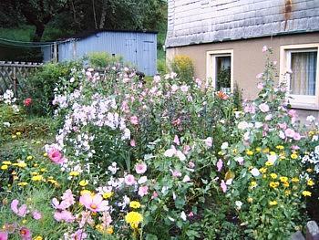 Kouzelná zahrada - Obrázek č. 3