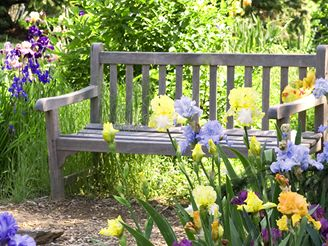 Kouzelná zahrada - Obrázek č. 37