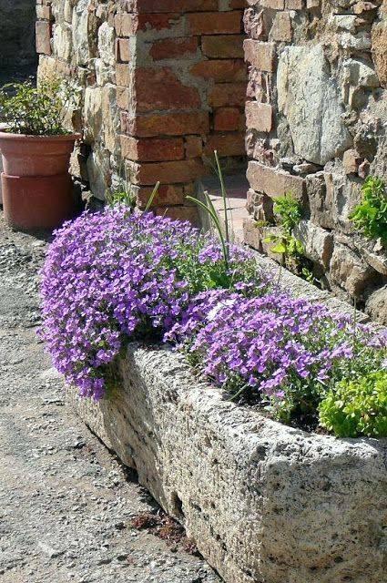 Kouzelná zahrada - Obrázek č. 91
