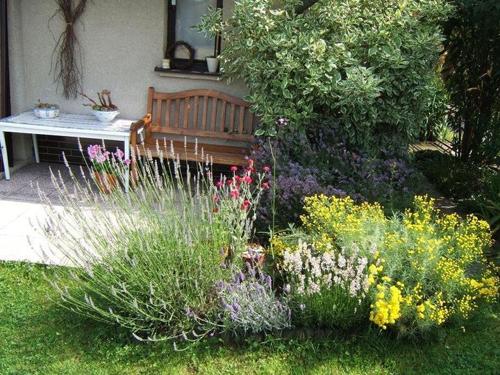 Kouzelná zahrada - Obrázek č. 93