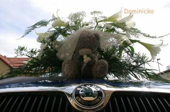 medvidek na mém autě