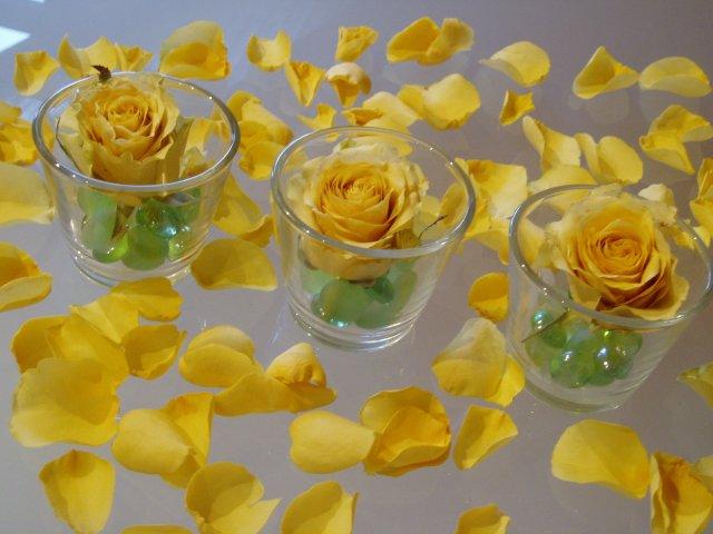 Květnová svatba 3.5.2008 - Pet'a a Míša - inspirace na stůl