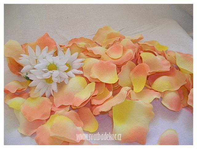 Květnová svatba 3.5.2008 - Pet'a a Míša - a samozřejmě lístečky růží
