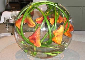 Květnová svatba 3.5.2008 - Pet'a a Míša - inspirace