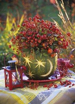 Jesenné čaro - Obrázok č. 14