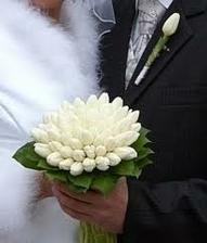 biele tulipány - také budem mať aj ja