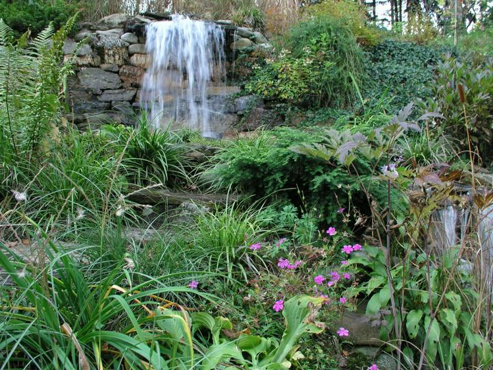 Voda v záhrade - Obrázok č. 6