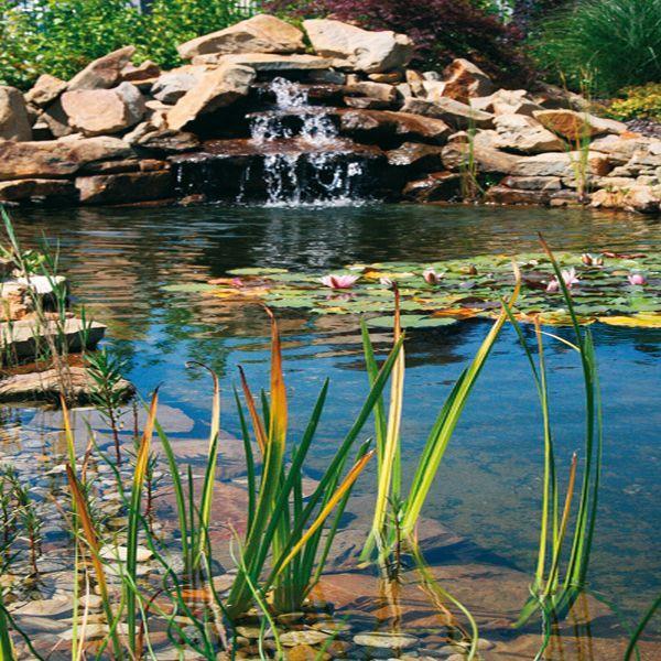 Voda v záhrade - Obrázok č. 9
