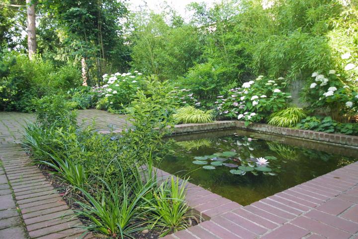 Voda v záhrade - Obrázok č. 20