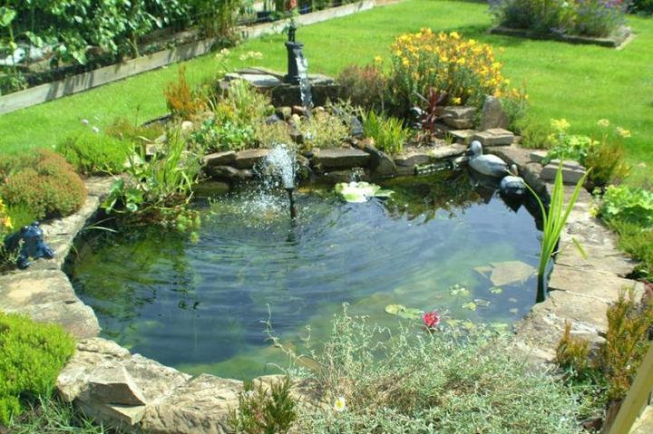 Voda v záhrade - Obrázok č. 29