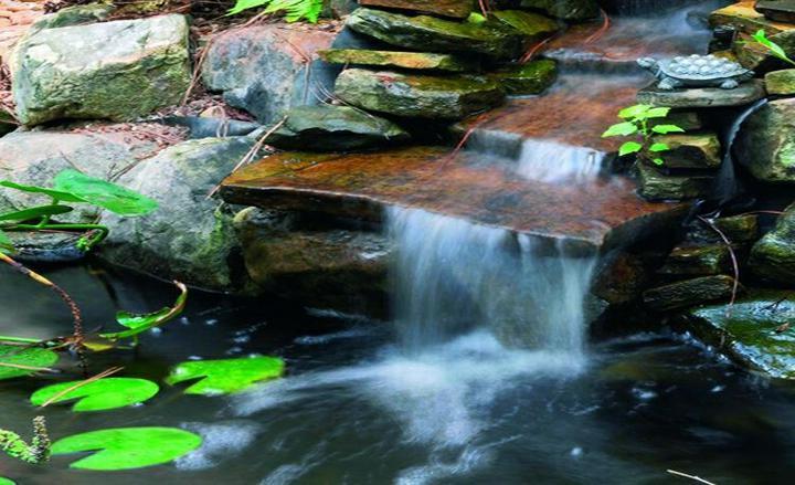 Voda v záhrade - Obrázok č. 30