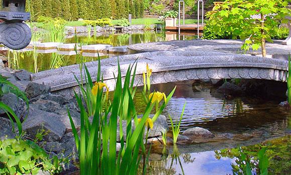 Voda v záhrade - Obrázok č. 56