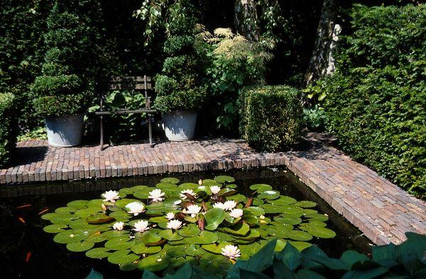 Voda v záhrade - Obrázok č. 57