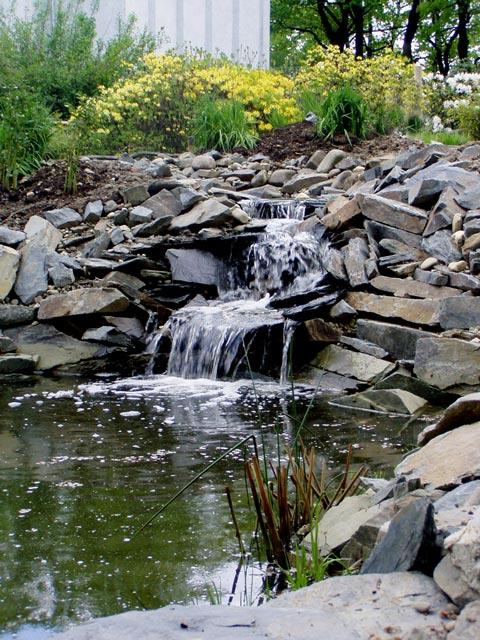 Voda v záhrade - Obrázok č. 60