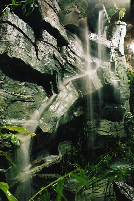 Voda v záhrade - Obrázok č. 62