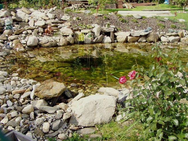 Voda v záhrade - Obrázok č. 64