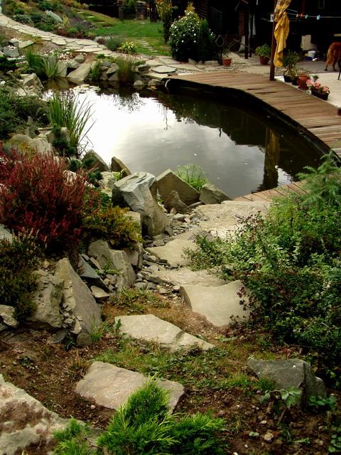 Voda v záhrade - Obrázok č. 66