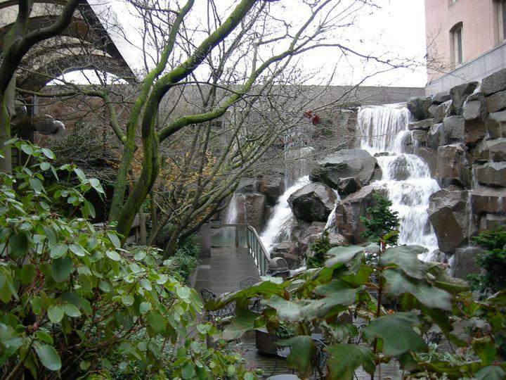 Voda v záhrade - Obrázok č. 73