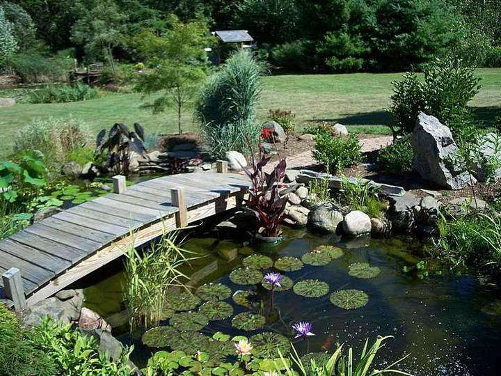 Voda v záhrade - Obrázok č. 75