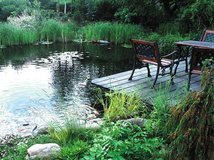 Voda v záhrade - Obrázok č. 86