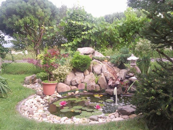 Voda v záhrade - Obrázok č. 91