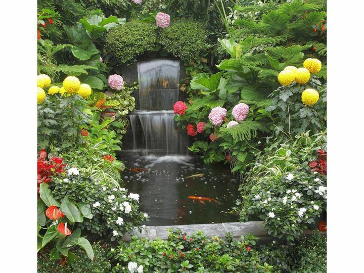 Voda v záhrade - Obrázok č. 95
