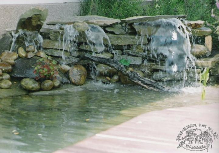 Voda v záhrade - Obrázok č. 99