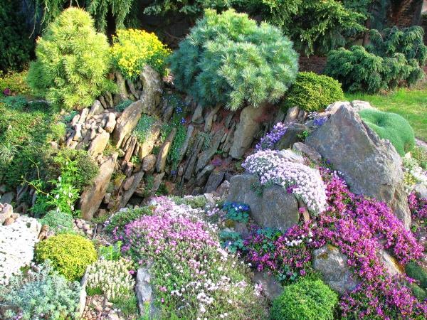 Skalky,skalničky a všeličo do záhrady - Obrázok č. 1