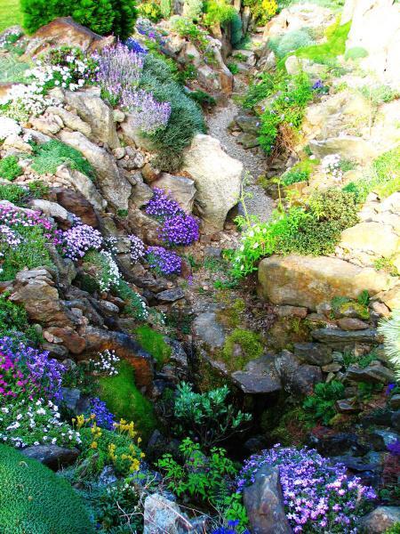 Skalky,skalničky a všeličo do záhrady - Obrázok č. 2