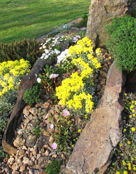 Skalky,skalničky a všeličo do záhrady - Obrázok č. 3