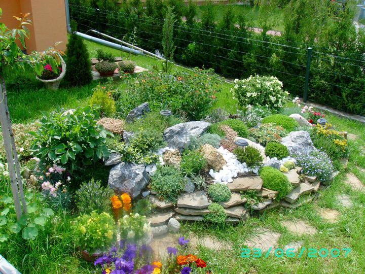 Skalky,skalničky a všeličo do záhrady - Obrázok č. 45