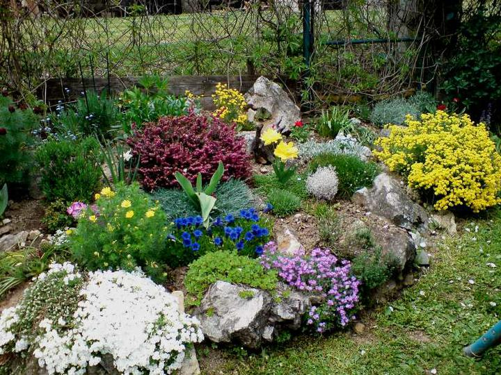 Skalky,skalničky a všeličo do záhrady - Obrázok č. 47