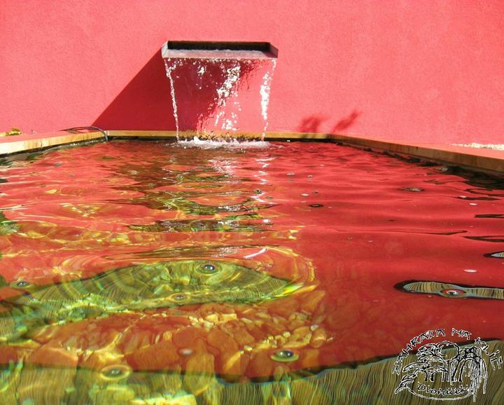 Voda v záhrade - Obrázok č. 114
