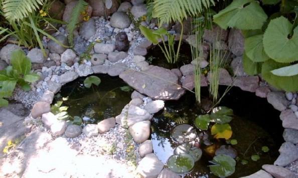 Voda v záhrade - Obrázok č. 116