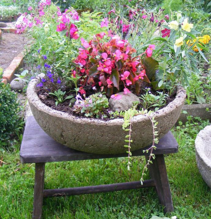 Skalky,skalničky a všeličo do záhrady - Obrázok č. 67