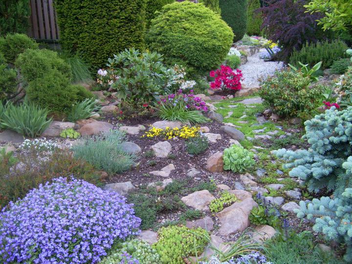 Skalky,skalničky a všeličo do záhrady - Obrázok č. 77