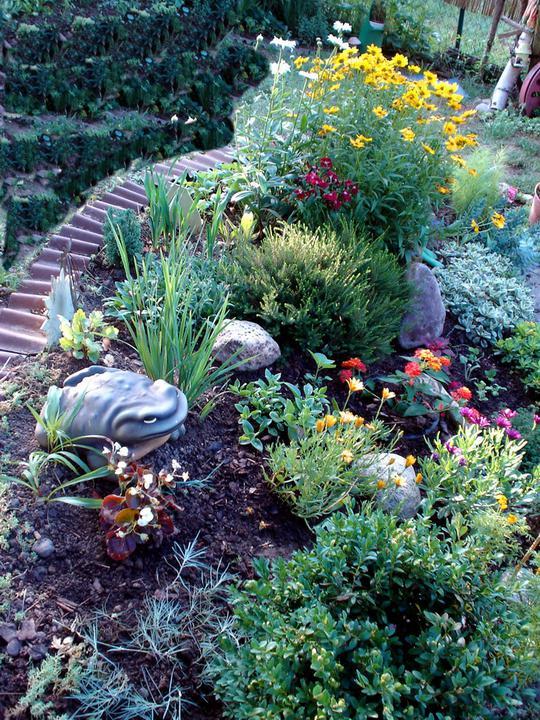 Skalky,skalničky a všeličo do záhrady - Obrázok č. 82