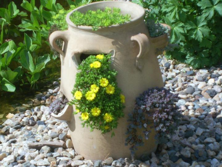 Skalky,skalničky a všeličo do záhrady - Obrázok č. 96