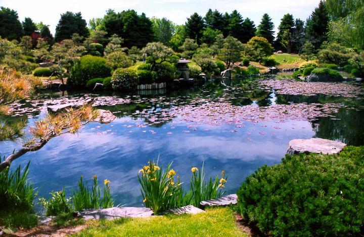 Voda v záhrade - Obrázok č. 128