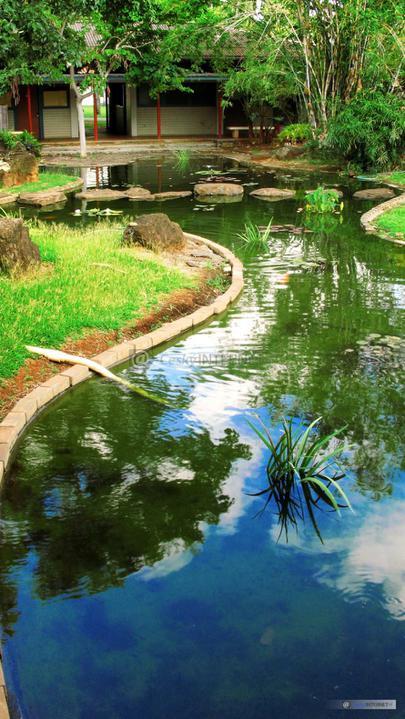 Voda v záhrade - Obrázok č. 147