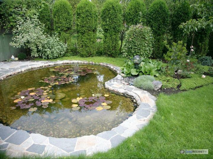 Voda v záhrade - Obrázok č. 149