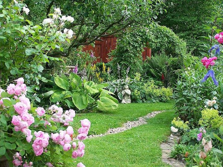 Krása divokej záhrady - Obrázok č. 79