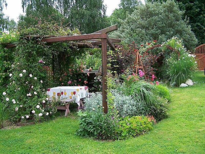 Krása divokej záhrady - Obrázok č. 100