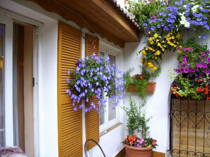 Balkonové a terasové zátišie - Obrázok č. 34