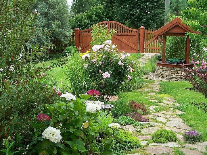 Krása divokej záhrady - Obrázok č. 87
