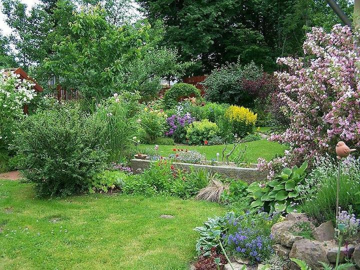 Krása divokej záhrady - Obrázok č. 98